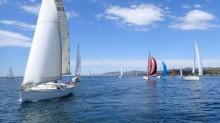 Mar Abierto - Los veleros de tipología Crucero son hoy mayoría ( © e. rosello)