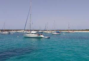 Mar Abierto - El campo de boyas Life Posidonia de Espalmador abarrotado en plena